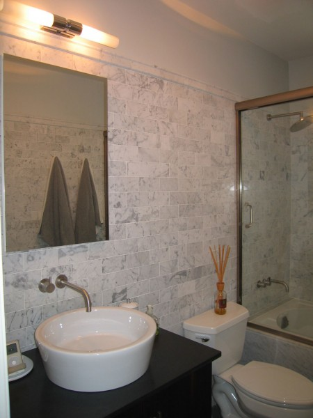 Lakeview condo eve fineman design llc for Condo bathroom designs